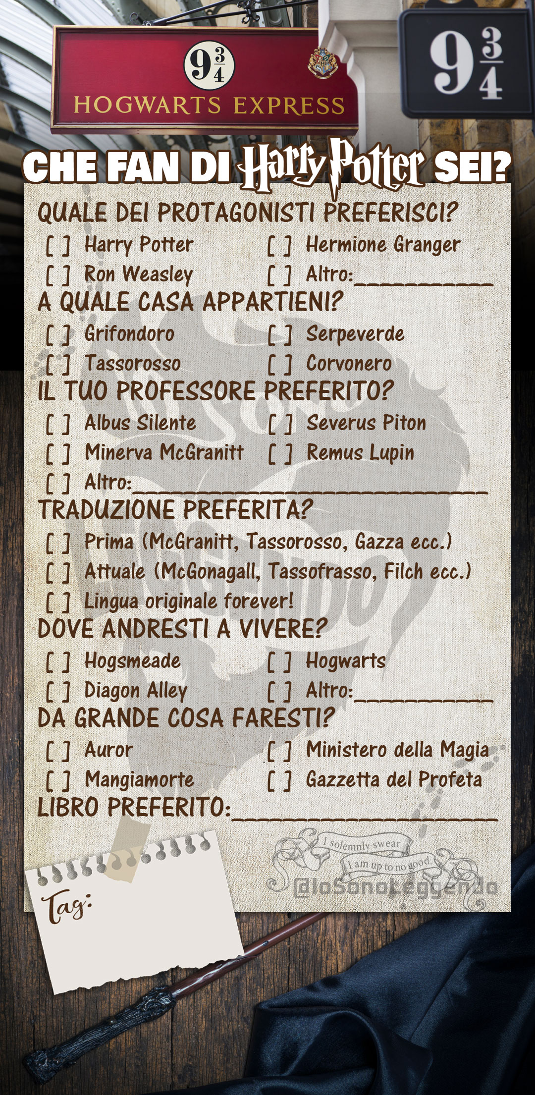 Fan di Harry Potter